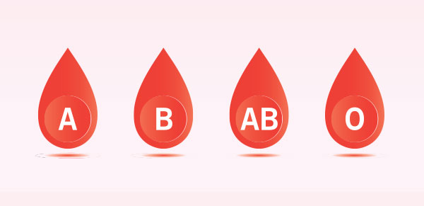 Blood Types Image | Shepeard Blood
